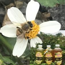 Nhiều bí mật về cách mua Mật Ong nuôi Rừng ít người biết
