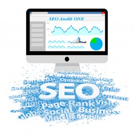 Dịch vụ seo website Audit One