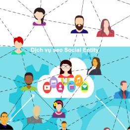 Có dịch vụ seo Social Entity Pro không còn nỗi lo tụt hạng từ khóa